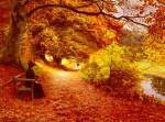 A Wooded path in Autumn, by Hans Anderson Brendekilde